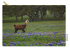 Llama In Bluebonnets Carry-all Pouch