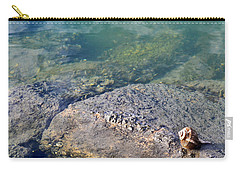 Lonely Shell Carry-all Pouch by Patricia Greer