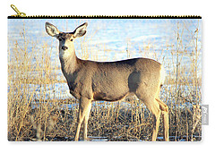 Carry-all Pouch featuring the photograph Lonesome Doe Sunset by Barbara Chichester