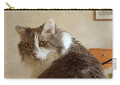 Carry-all Pouch featuring the photograph Long-haired Cat Portrait by Jayne Wilson