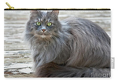 Long Haired Gray Cat Art Prints Carry-all Pouch