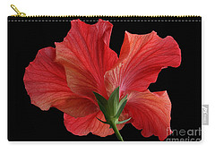 Carry-all Pouch featuring the photograph Looking Back by Judy Whitton