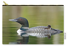 Loon Chick With Parent - Quiet Time Carry-all Pouch
