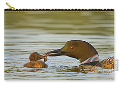 Loon Feeding Chick Carry-all Pouch by John Vose
