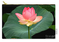 Lotus Of Late August Carry-all Pouch by Byron Varvarigos