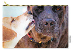 Carry-all Pouch featuring the photograph Love Licks by Janice Rae Pariza