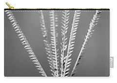 Carry-all Pouch featuring the photograph Loxahatchee Grass by Bradley R Youngberg