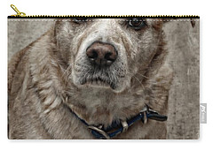 Carry-all Pouch featuring the photograph Loyalty  by Aaron Berg