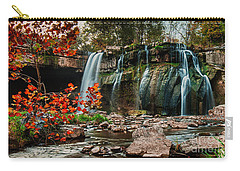 Ludlowville Falls Carry-all Pouch