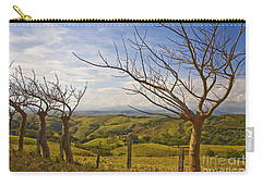 Lush Land Leafless Trees 2 Carry-all Pouch
