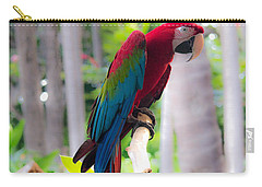 Carry-all Pouch featuring the photograph Macaw by Angela DeFrias