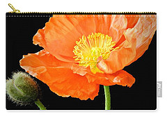 Magnificent Simplicity  Carry-all Pouch