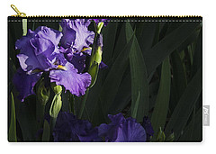 Majestic Spotlight Carry-all Pouch