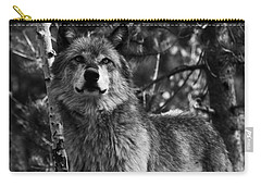Majesty Carry-all Pouch