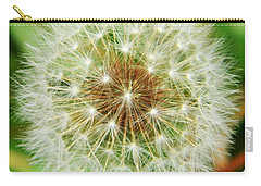 Make A Wish Carry-all Pouch by Andrea Anderegg