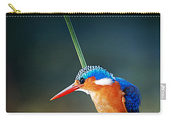Malachite Kingfisher Carry-all Pouch by Johan Swanepoel