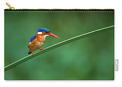 Malachite Kingfisher Tanzania Africa Carry-all Pouch by Panoramic Images