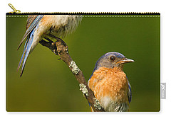 Carry-all Pouch featuring the photograph Male And Female Bluebirds by Jerry Fornarotto