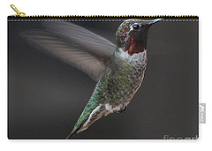 Carry-all Pouch featuring the photograph Male Anna Hummingbird In Flight by Jay Milo
