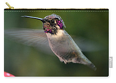 Carry-all Pouch featuring the photograph Male Anna's In Flight by Jay Milo