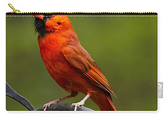 Male Cardinal Carry-all Pouch