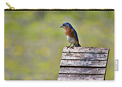 Male Eastern Bluebird Carry-all Pouch