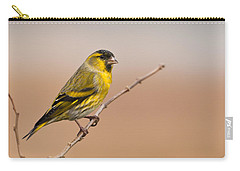 Male Eurasian Siskin Carry-all Pouch