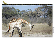 Carry-all Pouch featuring the photograph Male Giraffes Necking by Liz Leyden