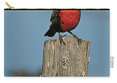 Male Long-tailed Meadowlark On Fencepost Carry-all Pouch