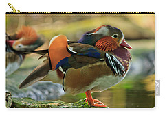 Carry-all Pouch featuring the photograph Male Mandarin Duck On A Rock by Eti Reid
