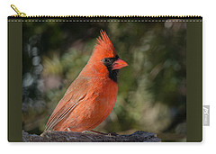 Male Northern Cardinal 3 Carry-all Pouch