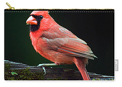Male Northern Cardinal Cardinalis Carry-all Pouch by Panoramic Images