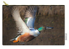 Male Northern Shoveler Carry-all Pouch