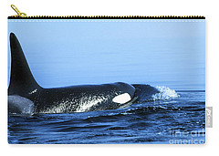 Carry-all Pouch featuring the photograph Male Orca Off The San Juan Islands Washington 1986 by California Views Mr Pat Hathaway Archives