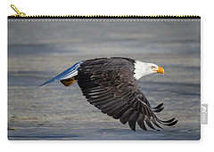 Male Wild Bald Eagle Ready To Land Carry-all Pouch by Eti Reid
