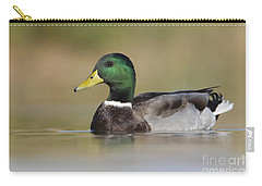 Carry-all Pouch featuring the photograph Mallard by Bryan Keil