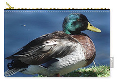 Carry-all Pouch featuring the photograph Mallard Duck by Kerri Mortenson