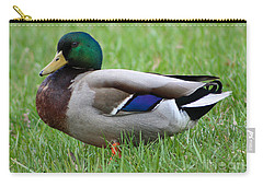 Mallard Portrait Carry-all Pouch