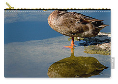 Mallard Reflection Carry-all Pouch