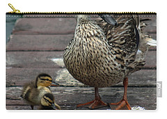Mama Duck And Ducklings Carry-all Pouch by Pamela Walton