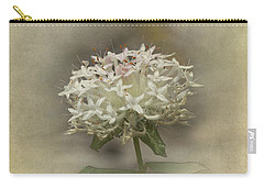 Carry-all Pouch featuring the photograph Mandy by Elaine Teague
