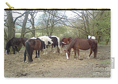 May Hill Ponies 3 Carry-all Pouch