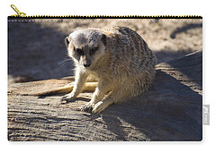 Meerkat Resting On A Rock Carry-all Pouch by Chris Flees
