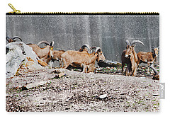 Meeting Of Barbary Sheep Carry-all Pouch