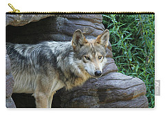 Mexican Wolf #2 Carry-all Pouch