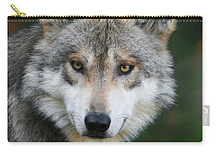 Mexican Wolf #3 Carry-all Pouch