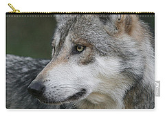 Mexican Wolf #6 Carry-all Pouch by Judy Whitton