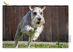 Carry-all Pouch featuring the photograph Miniature Schnauzer by Michael Chatt