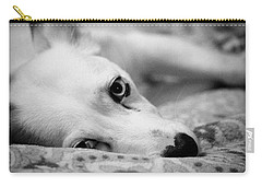 Carry-all Pouch featuring the photograph Miss Donut  by Faith Williams