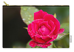 Miss Misty Of Love 1 Carry-all Pouch by Walter Herrit